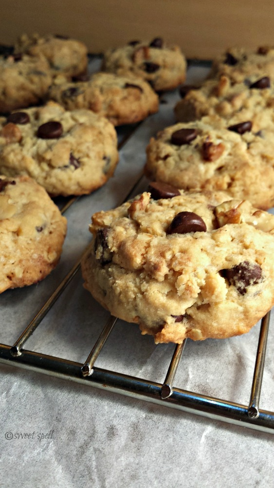 Chocolate-chip cookie2